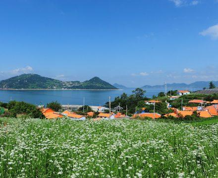 한국에도 미세먼지 걱정 없는 섬이 있다면?